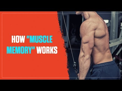 """""""Muscle Memory"""" is Real and Here's How It Works (2018)"""