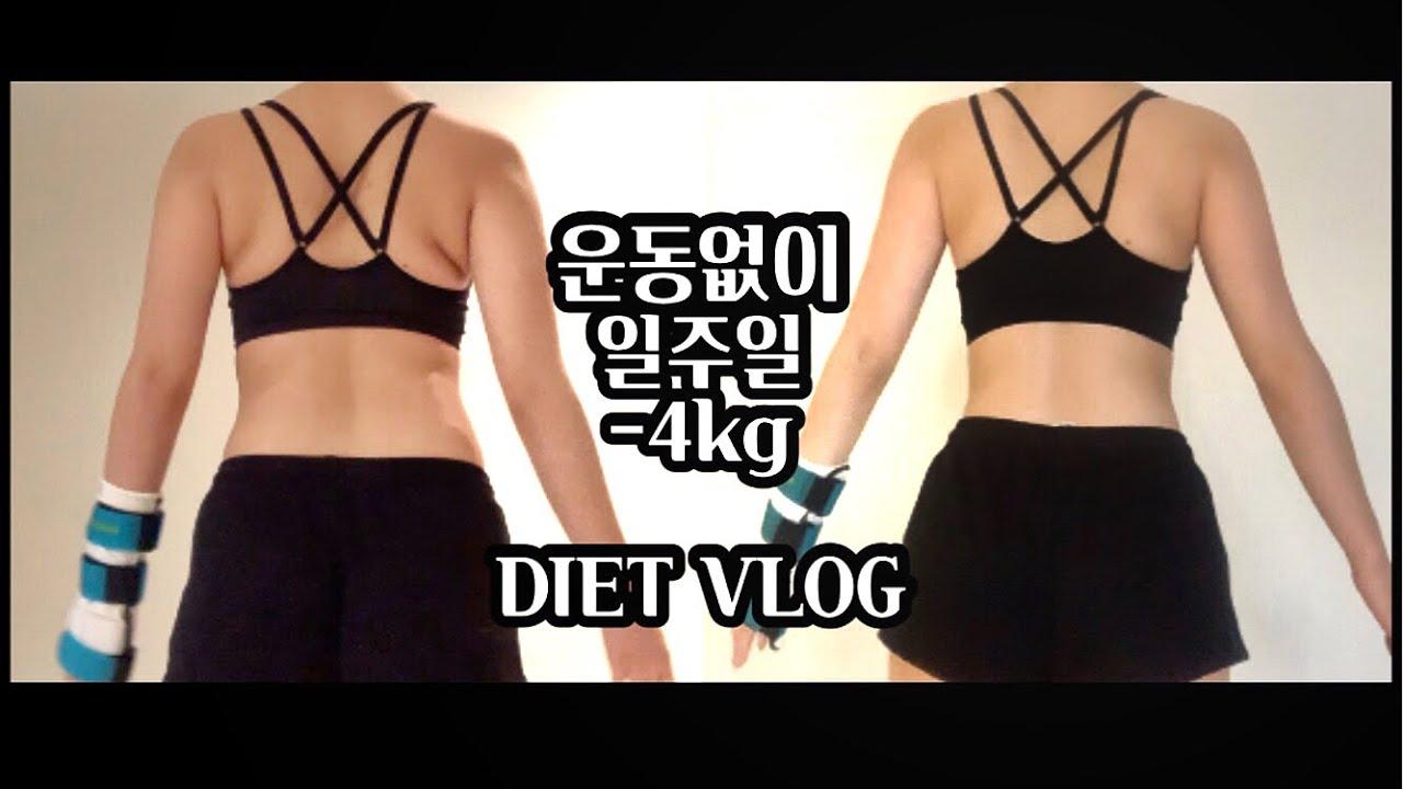 [Diet vlog] 운동없이 일주일에 -4.8kg 급찐급빠 다이어트 🔥(abc주스만들기, 다이어트음식레시피, 토마토스튜)