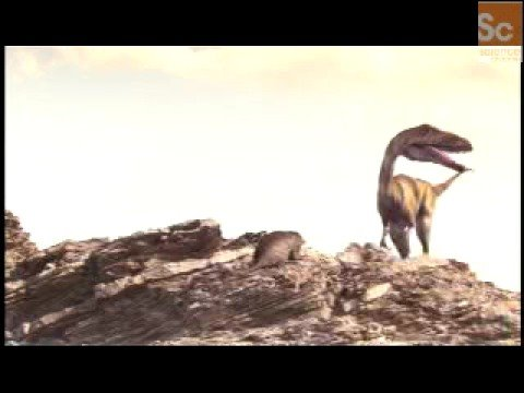 Mammals Vs. Dinos Coelophysis Domination