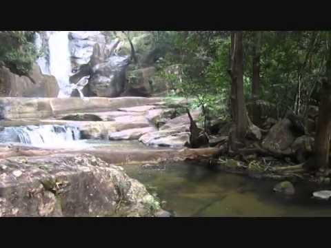 Vazhvanthol Waterfall