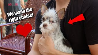 We're Glad We Chose This Option For Our Dog | Vlog #1123