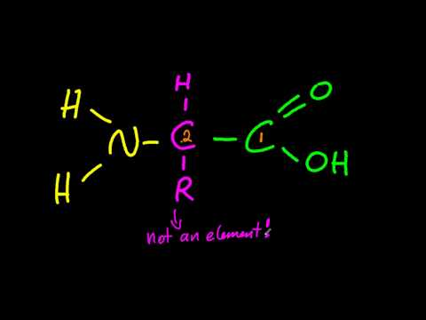 B2 Draw the general formula of 2-amino acids [SL IB Chemistry]