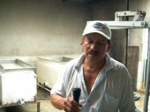 Preyecto peces en jaulas flotantes doovi for Criar mojarras en casa