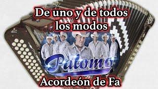 De uno y de todos los modos Palomo acordeón
