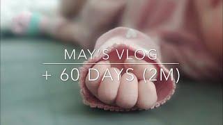 [May의 육아기록 #2 신생아 딱지를 갓 뗀 아기와 …