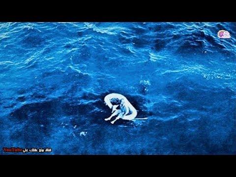 لفتاة عثر عليها وحيدة في المحيط لمدة ثلاثة أيام  - كيف حدث ذلك ؟؟!