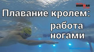Плавание кролем: работа ногами. Тренер Ермин Андрей.