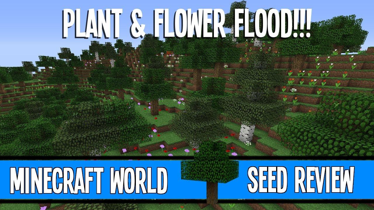 Huge Flower Forest Amp Roofed Forest Amp Ravines Minecraft