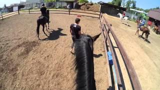 Верховая езда от первого лица