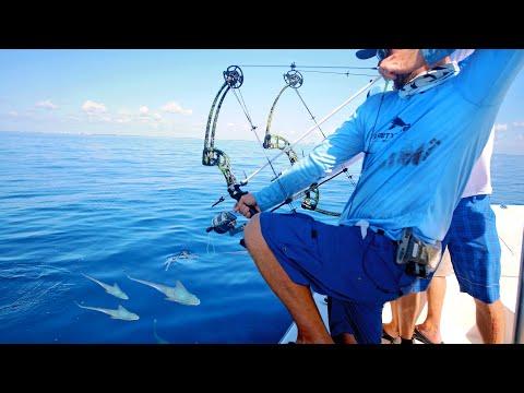 Bow Fishing for Tuna Fish