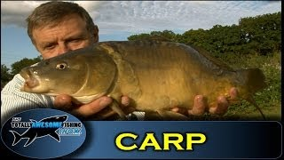 Carp fishing with Bread - The Totally Awesome Fishing Show