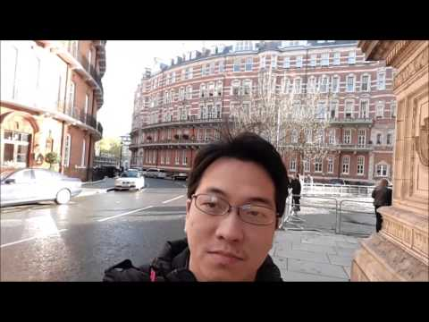 visit my auntie in london 2015 london eye central london st albans Buckingham palace