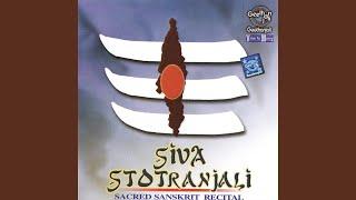 Bilva Ashtakam