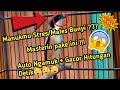 Cendet Gacor Bikin Emosi  Mp3 - Mp4 Download