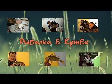 Рыбалка в Кушве -  Невьянск , Кушвинский, День - Ночь