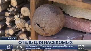 Отель для насекомых появился в Алматы