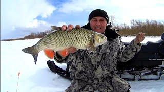 Рыбалка в Марте Ловим Окуня Головля и Щуку Рыбалка в Башкирии