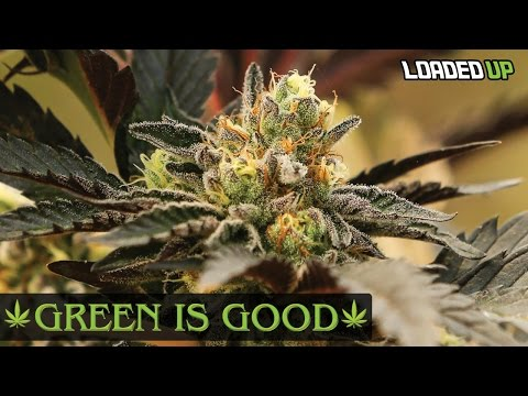 Weed Farmer! Green Is Good Ep 1 | Loaded Up