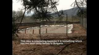 Pure Water: Constructed Wetlands in Bulgaria