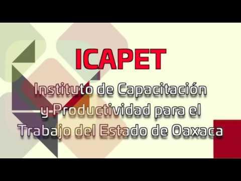 ¿Qué es el ICAPET