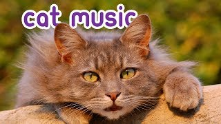 Quick Fix Cat Music - Help your cat relax in an instant!