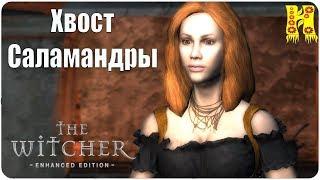 The Witcher: Прохождение №12 Хвост Саламандры (Ведьмак)
