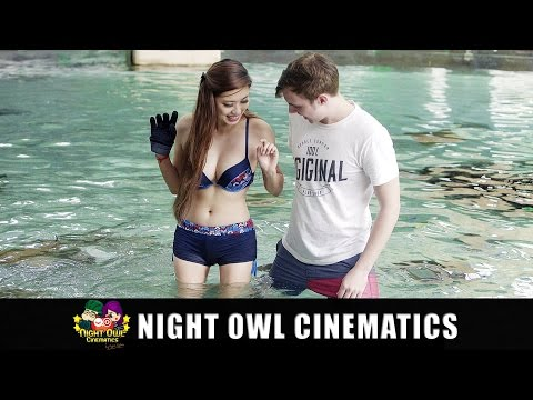 Night owl cinematics married vs dating after divorce
