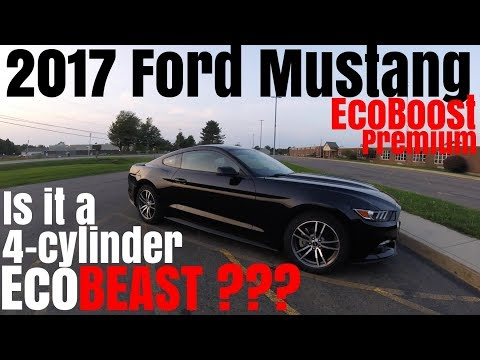 2017 Mustang Gt 0 60 >> 2017 Ford Mustang Ecoboost Premium 0 60 Review Youtube