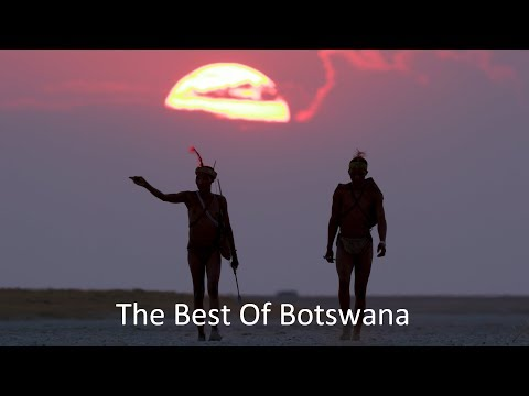 The Best of Botswana - Wildlife by Drone and by Land