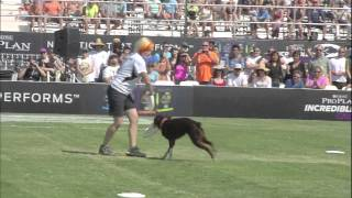 Repeat youtube video Flying Disc Dog Winner - 2014 Purina® Pro Plan® Incredible Dog Challenge Western Regionals
