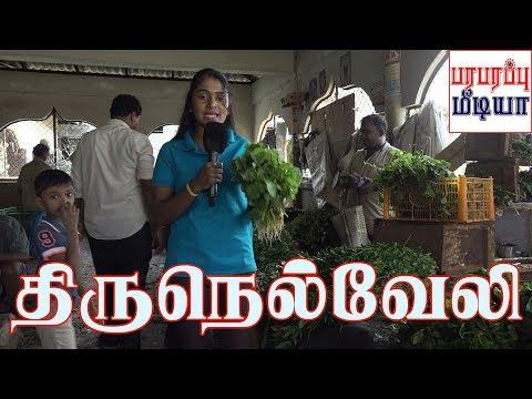 யாழ்ப்பாணம் வரவேற்கிறது | Jaffna Today Yazhpanam | திருநெல்வேலி | Thirunelvely | Paraparapu Media