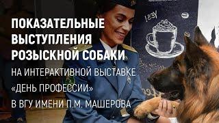 Показательные выступления розыскной собаки в ВГУ им. П.М. Машерова
