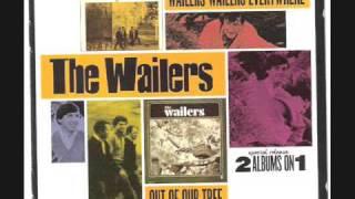 The Fabulous Wailers -summertime