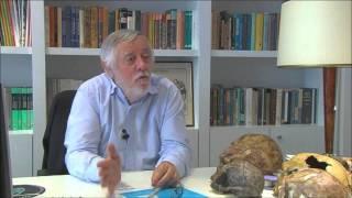Documental El Hombre de Orce (homenaje a J. Gibert) Parte 2/4