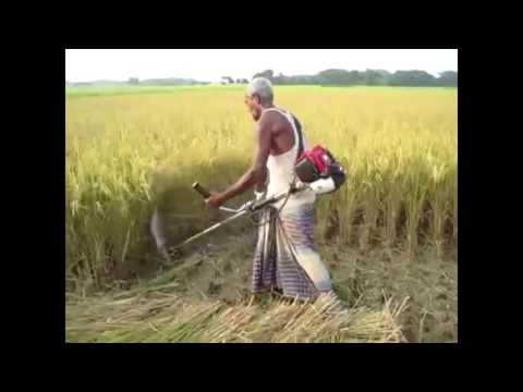 Technology Machine | Primitive Technology vs World Modern Agriculture Progress Mega Machines Harves