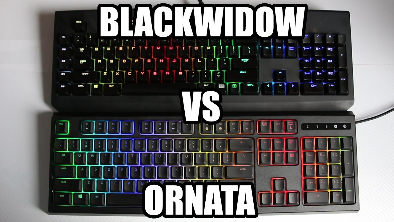 7c0bc1dc870 Razer Ornata Chroma VS Razer Blackwidow Chroma Comparison! - YouTube