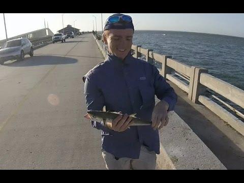 Skyway pier fishing spanish mackerel and ladyfish youtube for Skyway fishing pier fishing report