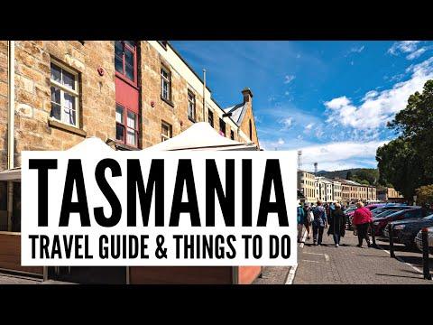 Ten Amazing Things To Do On A Tasmania Road Trip – The Big Bus