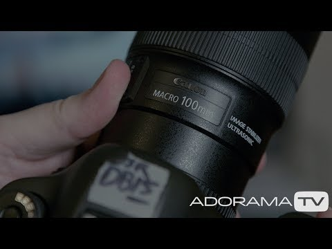 How to Use Focus Stacking for Sharper Macro Photography (Video Tutorial)