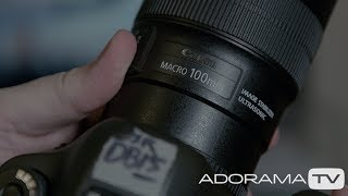 Focus Stacking: Two Minute Tips with David Bergman
