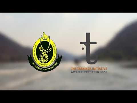Tashinga Initiative - Riverine Antipoaching Training Course