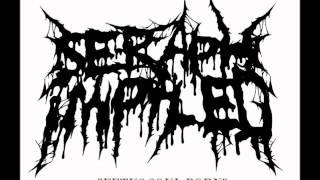Seraph Impaled - Fetus Soul Porn