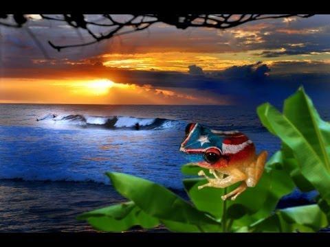 Musica patriotica de puerto rico tony croatto danny ri doovi - Volar a puerto rico ...
