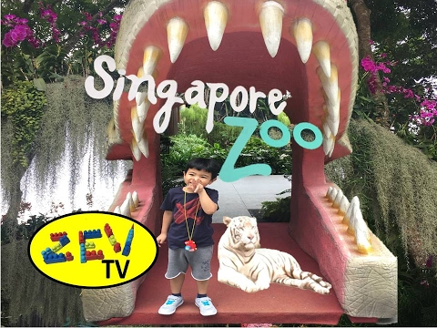 """marketing mix four p for singapore zoo Marketing strategies break down the marketing mix into the """"four ps and is often associated with the four p's: price, product."""