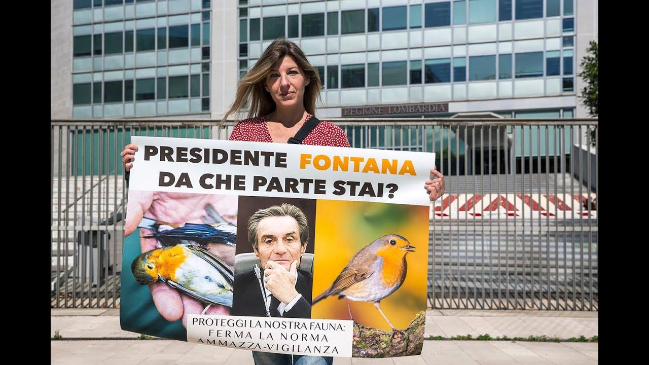 La Regione Lombardia ammazza la vigilanza e salva i bracconieri ...