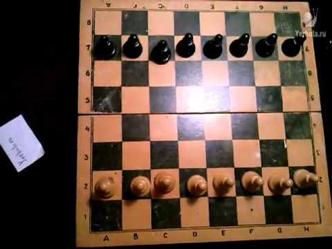 Как правильно расставить фигуры на шахматной доске