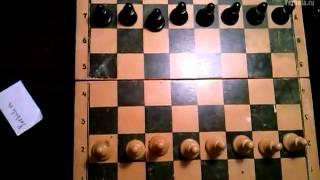 Шахматы. Урок #1. Правильно расставляем фигуры
