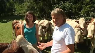 Doubs : le woofing, ou comment passer ses vacances à la ferme