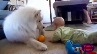 Дети и животные смешное видео  Дети и собаки(Развлекайтесь вместе с нами! Самые смешные видео со всего интернета.Подписывайтесь на наш канал! Экологичн..., 2015-09-14T20:36:05.000Z)