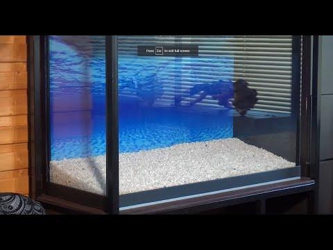 Вопрос: Можно ли в аквариум поместить мрамор Как его предварительно обработать?